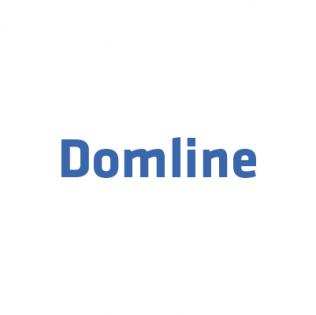 Логотип Domline